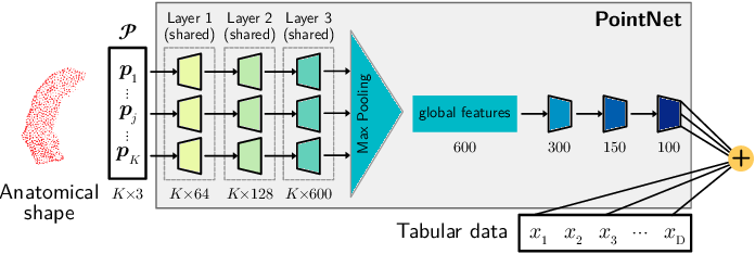Figure 1 for Scalable, Axiomatic Explanations of Deep Alzheimer's Diagnosis from Heterogeneous Data