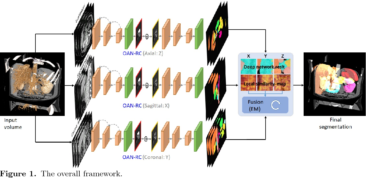 Figure 1 for Abdominal multi-organ segmentation with organ-attention networks and statistical fusion