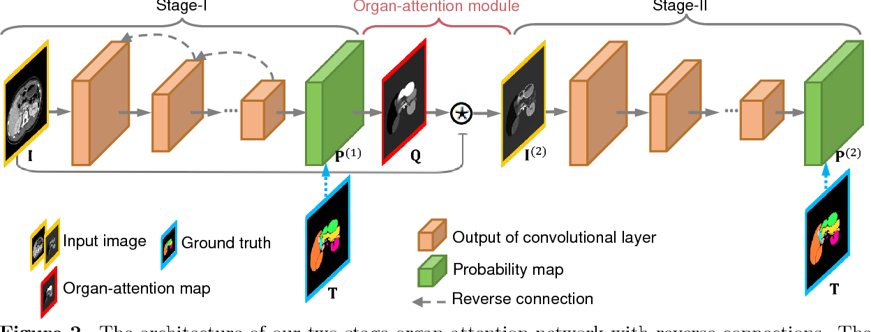 Figure 3 for Abdominal multi-organ segmentation with organ-attention networks and statistical fusion