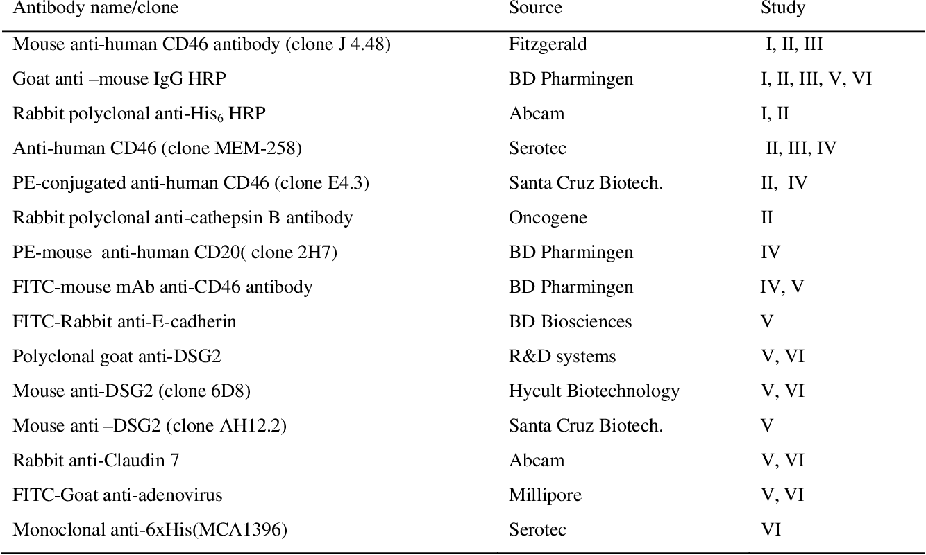 Table 3 : Antibodies used in this study