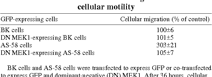 Table 1. The effects of dominant-negative MEK1 on cellular motility