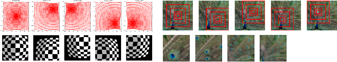 Figure 1 for Biologically Inspired Mechanisms for Adversarial Robustness