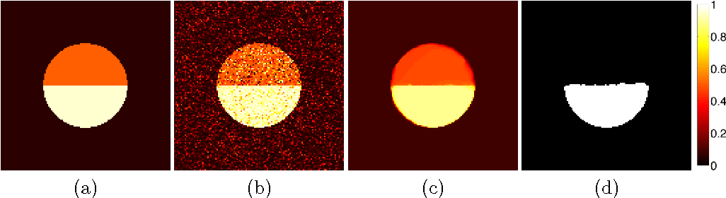 Figure 2 for Active Mean Fields for Probabilistic Image Segmentation: Connections with Chan-Vese and Rudin-Osher-Fatemi Models
