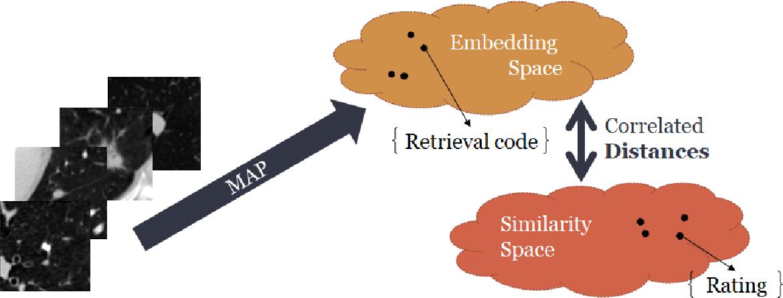 Figure 1 for Semi-supervised lung nodule retrieval