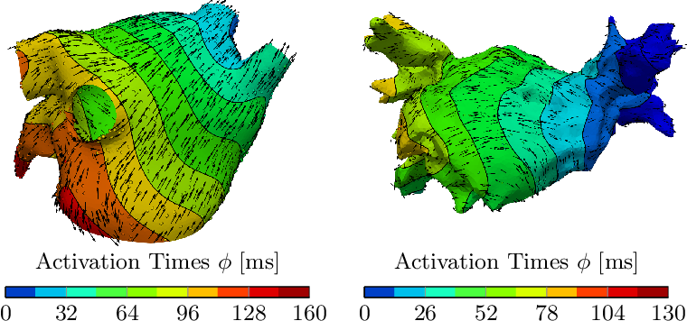 Figure 3 for Learning atrial fiber orientations and conductivity tensors from intracardiac maps using physics-informed neural networks