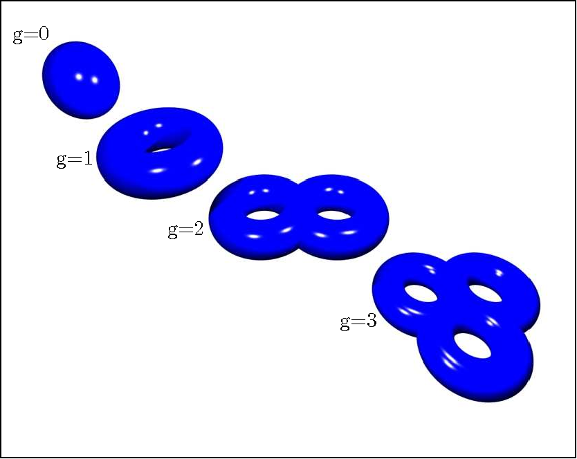 Figure 3: First few terms of the topological expansion of closed oriented surfaces: the term g = 0 is a sphere, g = 1 is a torus, g = 2 is a double torus and so forth.