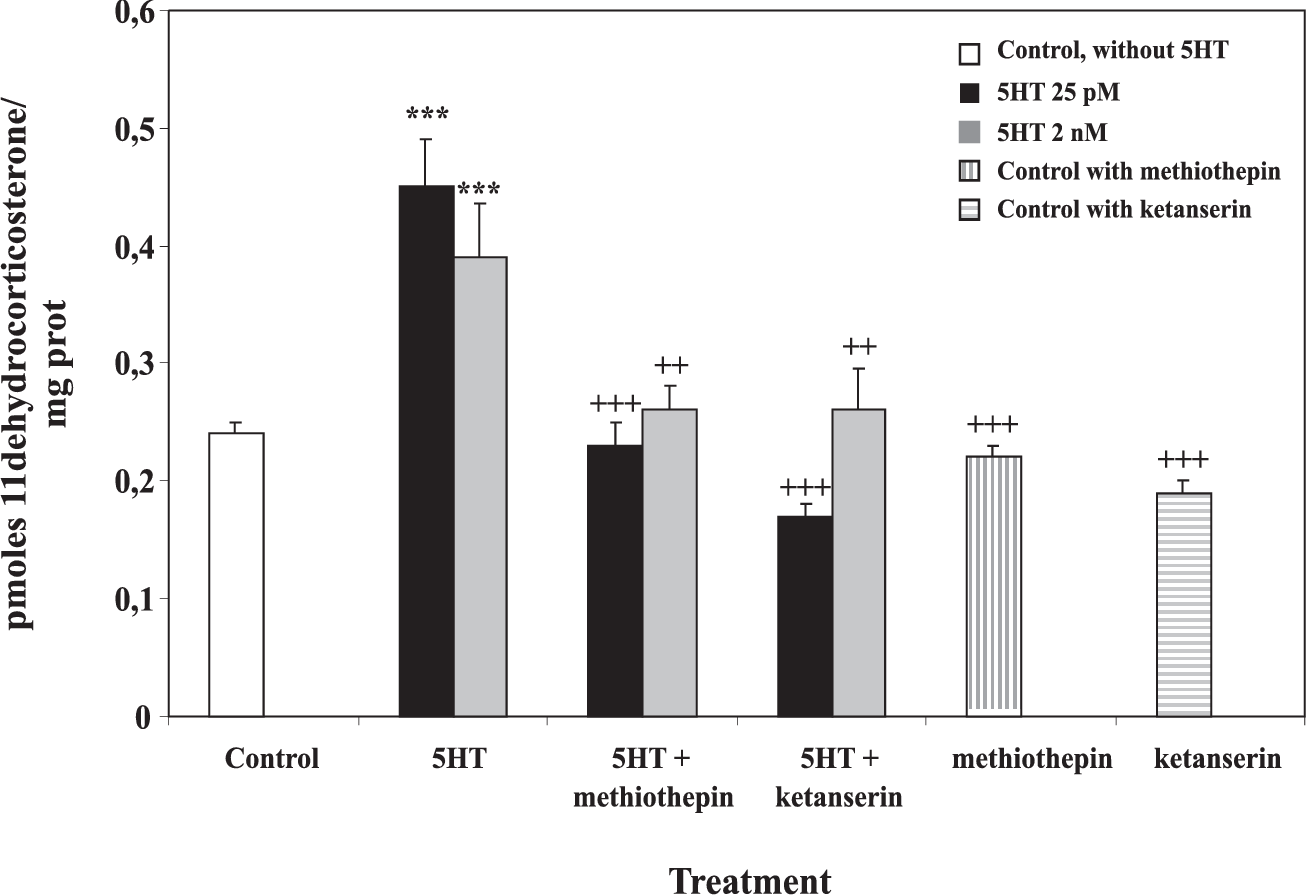 FIGURE 4. Effect of 5HT antagonists. Intact MDCK cells were preincubated at 37ºC during 15 min with 1 µM methiothepin or ketanserin. [3H1,2,6,7]corticosterone (10 nM) and 5HT (25 pM or 2 nM) were then added and incubated with the cells during 75 min at 37ºC. 11ß-HSD2 activity was expressed as pmoles of 11-dehydrocorticosterone per mg of protein during 75 min. Values represent the mean + SE of five independent experiments. ***p<0.001 vs Control; ++p<0.01, +++p<0.001 vs 5HT, Tukey-Kramer's Test.