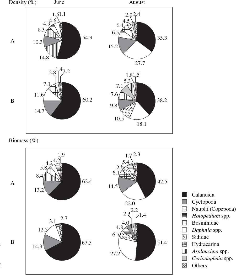 Fig. 5 Relative biomass and density of zooplankton by taxon in lake group A (high differentiation between whitefish ecotypes) and B (low differentiation) for each month. Values represent the percent contribution of each taxon for a month in a lake group.