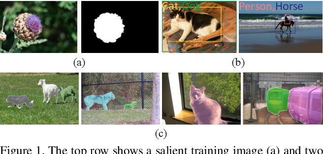 Figure 1 for Weakly-supervised Instance Segmentation via Class-agnostic Learning with Salient Images