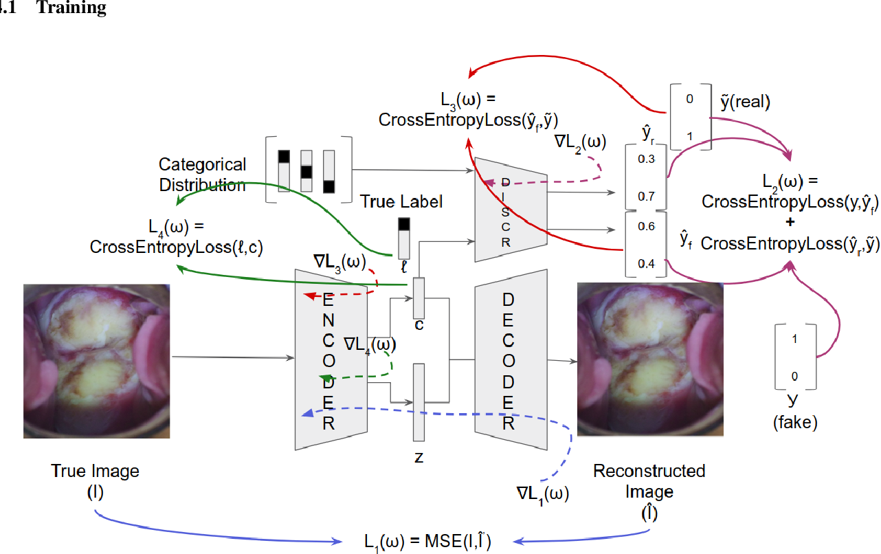 Figure 4 for Identification of Cervical Pathology using Adversarial Neural Networks