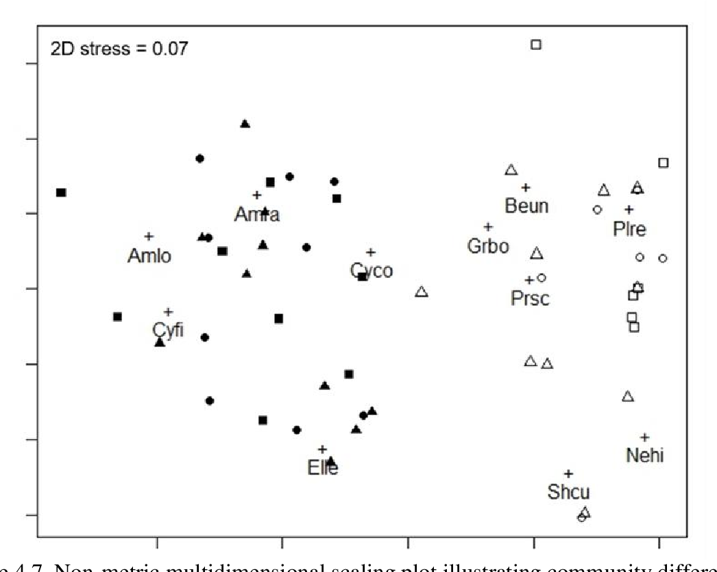 Figure 4.7. Non-metric multidimensional scaling plot illustrating community differences between sites, but not across locations within sites. Jungle Creek plots are indicated by open shapes and Cherokee Sound plots are in solid shapes. Circles are Interior plots, squares are edge plots, and triangles are continuous plots. Codes for amphipod taxa consist of four letters and '+', where Amlo is Ampithoe longimana, Amra is Ampithoe ramondi, Cyco is Cymadusa compta, Cyfi is Cymadusa filosa, Elle is Elasmopus levis, Beun is Bemlos unicornis, Grbo is Grandidierella bonnieroides, Plre is Plesiolembos rectangulatus, Prsc is Protohadzia schoenerae, Nehi is Neomegamphopus hiatus, and Shcu is Shoemakerella cubensis.