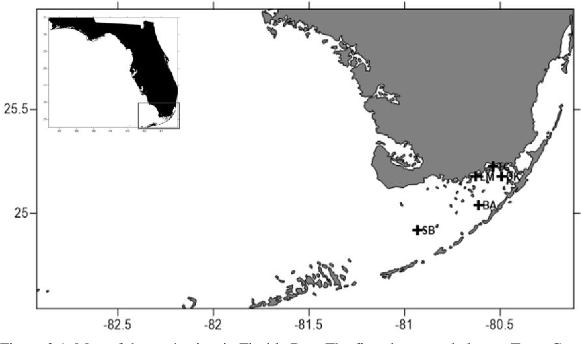 Figure 3.1. Map of the study sites in Florida Bay. The five sites sampled were Trout Cove (TC), Duck Key (DK), Little Madiera (LM), Bob Allen Keys (BA), and Sprigger Bank (SB).