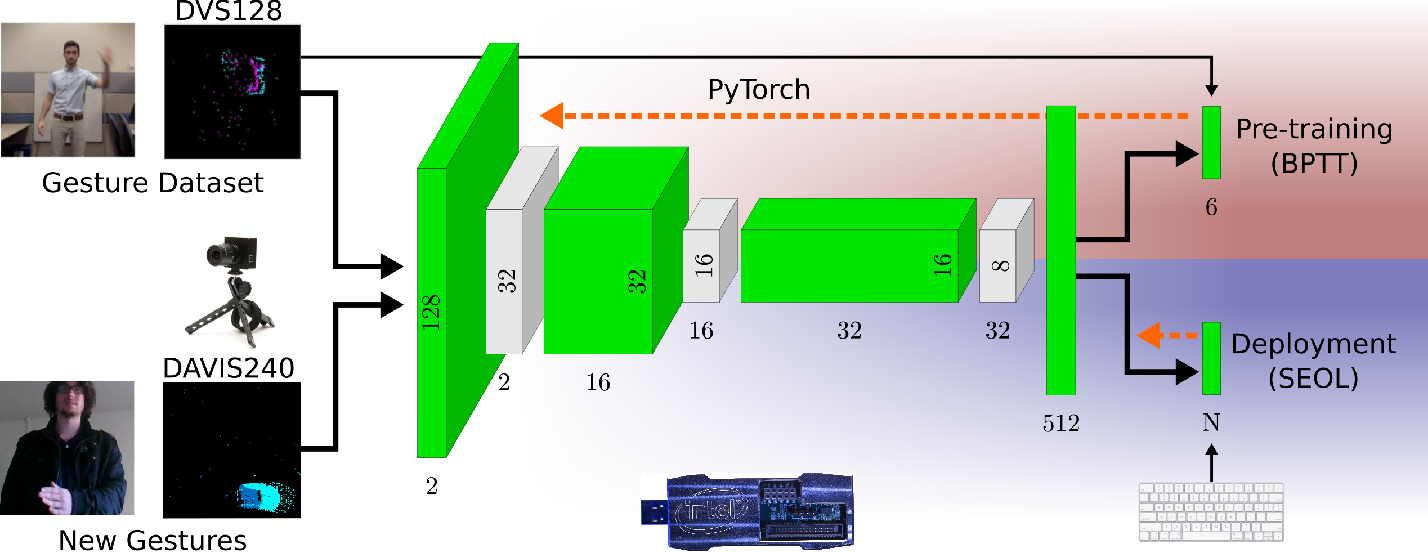Figure 3 for Online Few-shot Gesture Learning on a Neuromorphic Processor