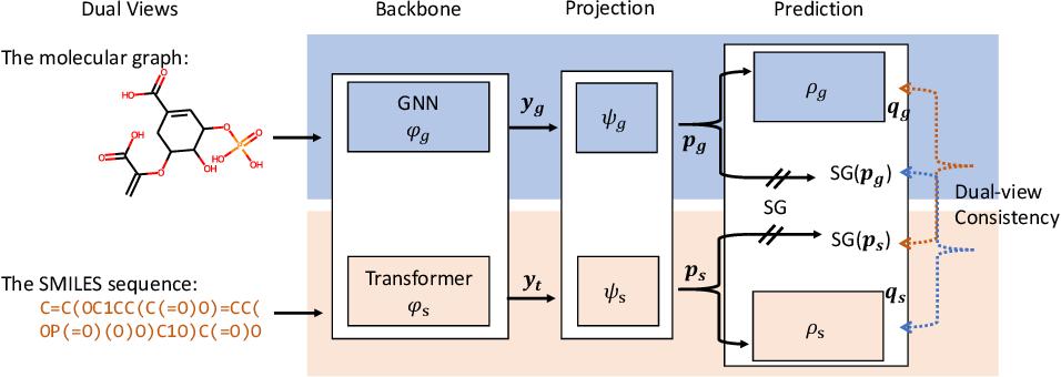 Figure 3 for Dual-view Molecule Pre-training
