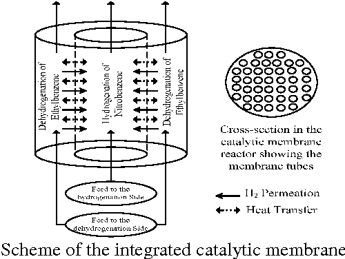 Fig. 1: Scheme of the integrated catalytic membrane reactor.