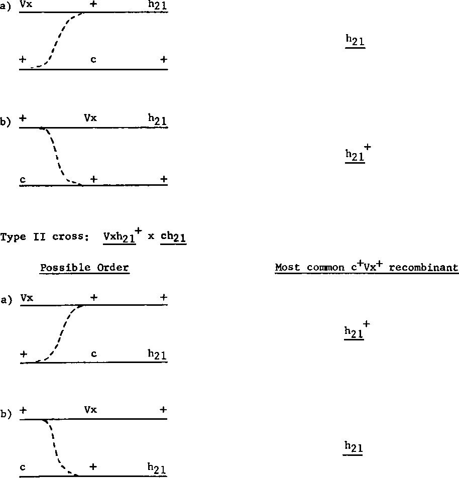 FIG. 4. Determination ofmap position of Vx.