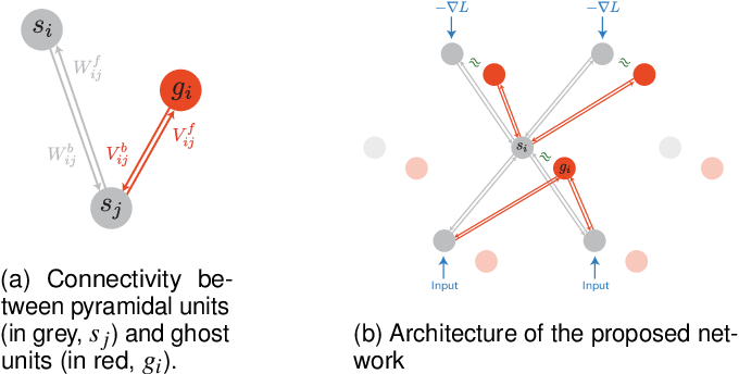 Figure 1 for Ghost Units Yield Biologically Plausible Backprop in Deep Neural Networks