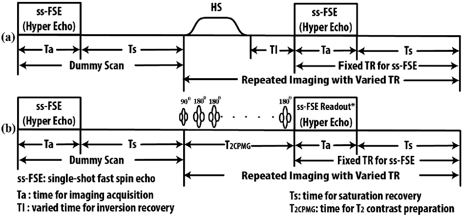 Figure 1 from measuring renal tissue relaxation times at 7 t t1 and t2 mapping sequence diagrams a sequence diagram for ccuart Gallery