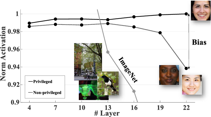 Figure 1 for InsideBias: Measuring Bias in Deep Networks and Application to Face Gender Biometrics