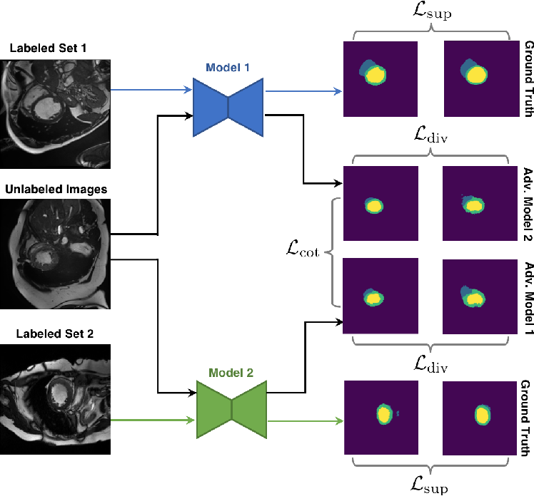 Figure 1 for Deep Co-Training for Semi-Supervised Image Segmentation