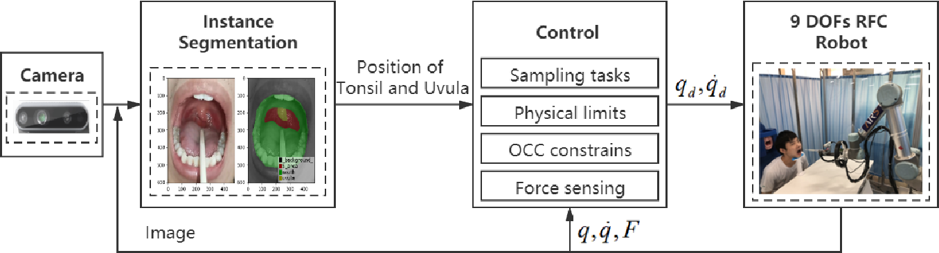 Figure 4 for Design and Control of a Highly Redundant Rigid-Flexible Coupling Robot to Assist the COVID-19 Oropharyngeal-Swab Sampling