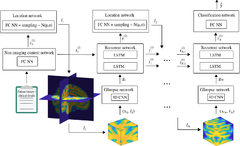 Figure 1 for NEURO-DRAM: a 3D recurrent visual attention model for interpretable neuroimaging classification