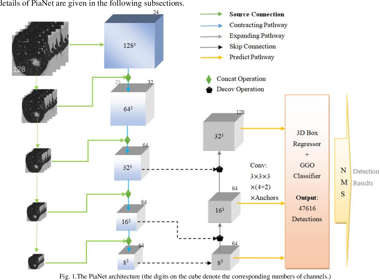Figure 1 for PiaNet: A pyramid input augmented convolutional neural network for GGO detection in 3D lung CT scans