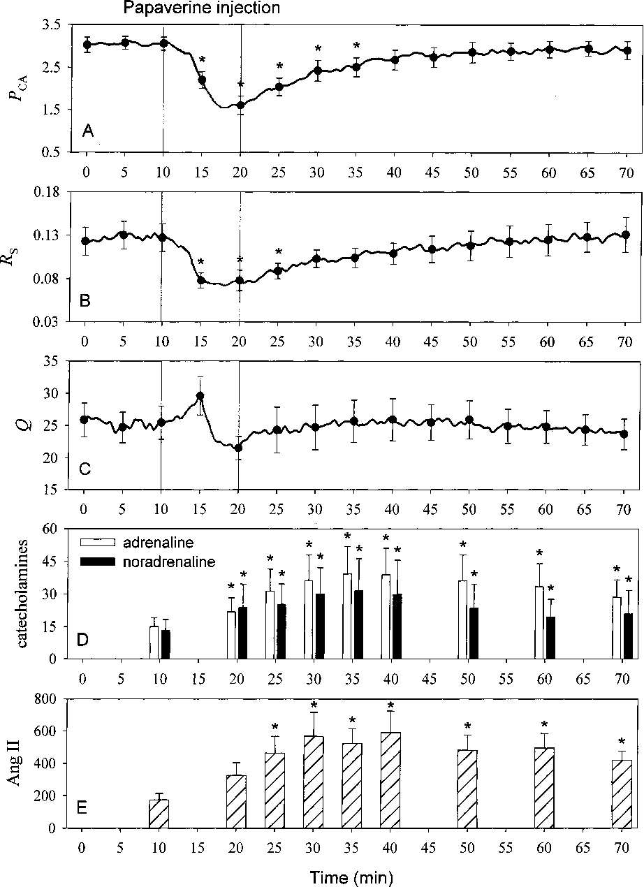 Cardiovascular control via angiotensin II and circulating ...