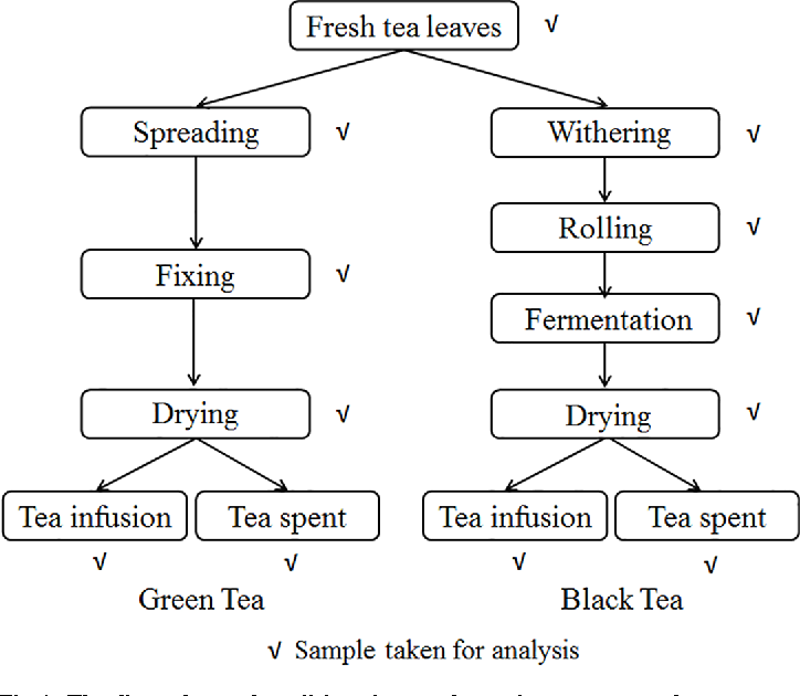 Figure 1 From Dissipation Pattern Processing Factors And Safety