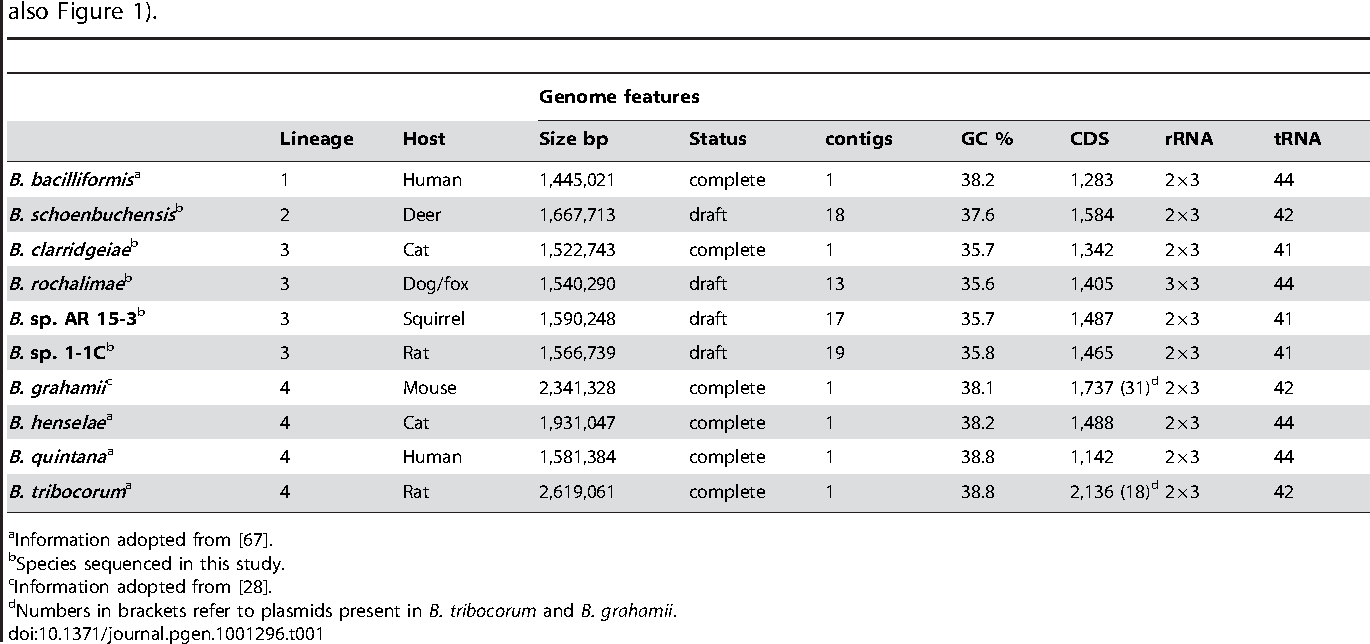 Table 1. Genomic features of analyzed Bartonella species and information about their reservoir host and phylogenetic lineage (see also Figure 1).
