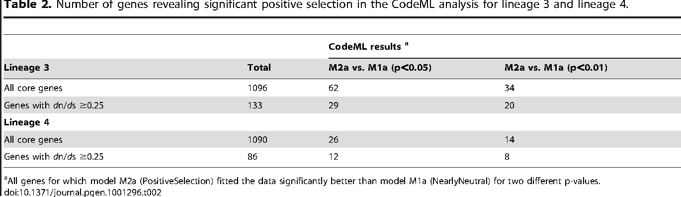 Table 2. Number of genes revealing significant positive selection in the CodeML analysis for lineage 3 and lineage 4.