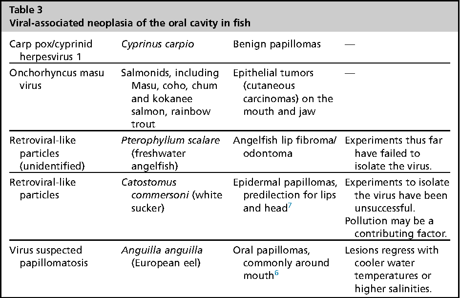 Table 3 From Anatomy And Disorders Of The Oral Cavity Of Ornamental