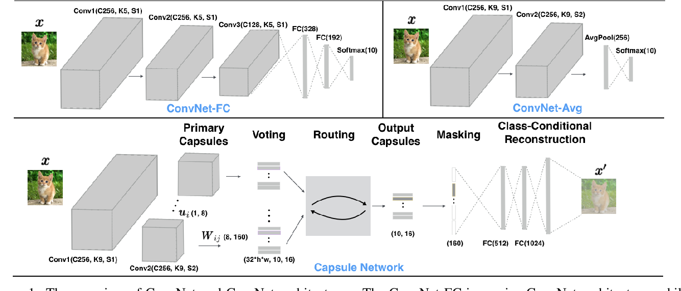 Figure 1 for Capsule Network is Not More Robust than Convolutional Network