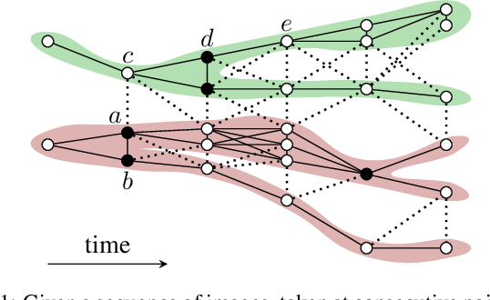 Figure 1 for Moral Lineage Tracing