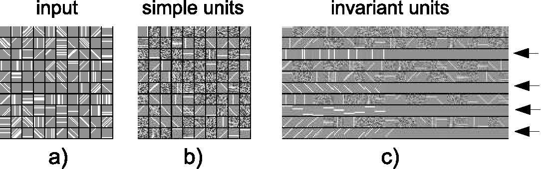 Figure 1 for Efficient Learning of Sparse Invariant Representations