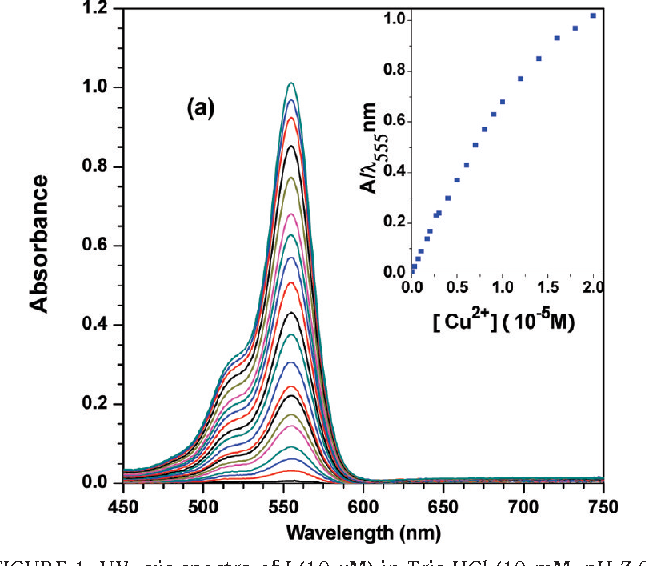 FIGURE 1. UV-vis spectra of I (10 µM) in Tris-HCl (10 mM, pH 7.0) buffer containing 50% (v/v) water/CH3CN in the presence of different amounts of Cu(II). Inset: absorbance at 555 nm as a function of the concentration of copper ions.