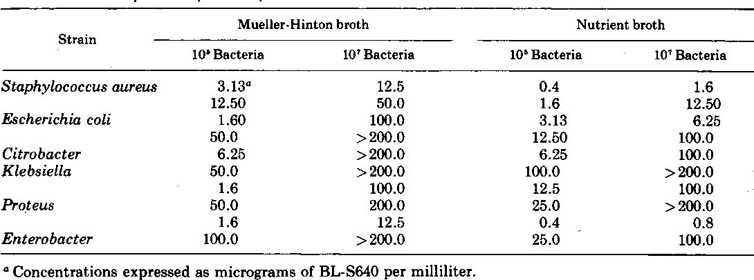 TABLE 4. Comparison of MICs of BL-S640 in nutrient or Mueller-Hinton broth with various inocula
