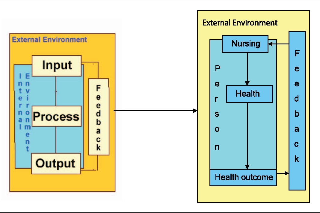 what is systems theory in nursing