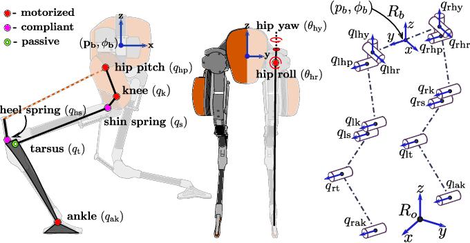 Figure 2 for Inverse Dynamics Control of Compliant Hybrid Zero Dynamic Walking