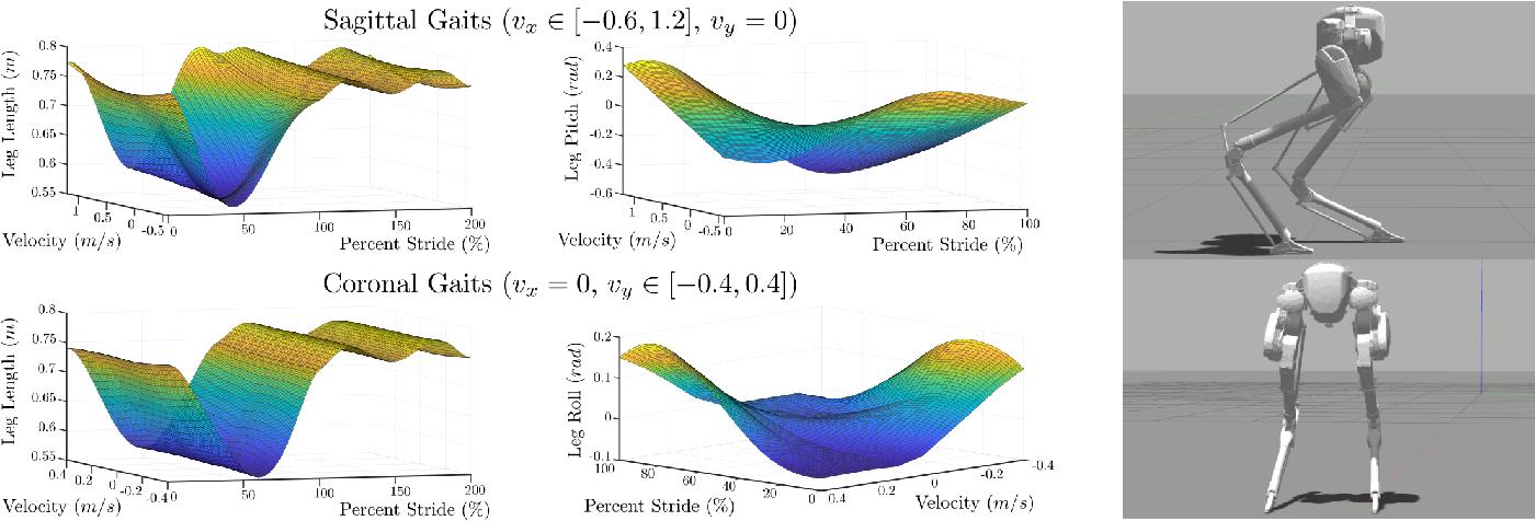 Figure 4 for Inverse Dynamics Control of Compliant Hybrid Zero Dynamic Walking