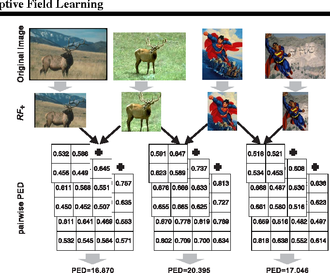 Figure 3 for Collaborative Receptive Field Learning