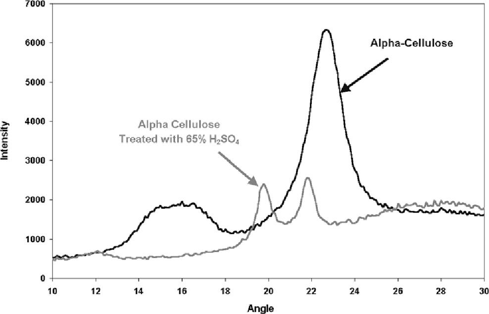 Heterogeneous Aspects Of Acid Hydrolysis Of Cellulose Semantic