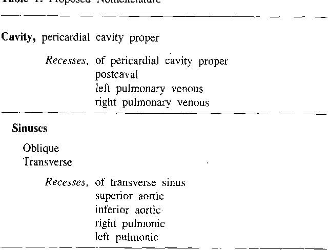 Cross Sectional Anatomy Of The Pericardial Sinuses Recesses And