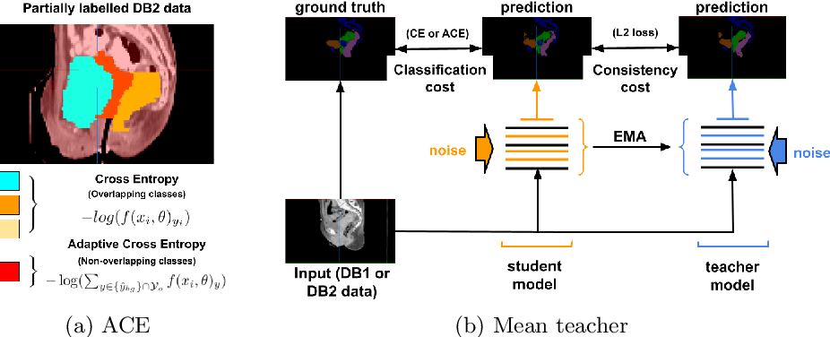 Figure 3 for Learning from Partially Overlapping Labels: Image Segmentation under Annotation Shift