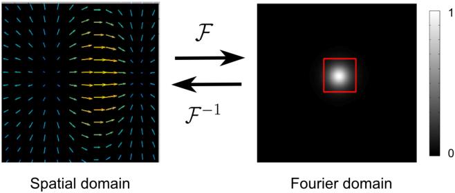 Figure 1 for DeepFLASH: An Efficient Network for Learning-based Medical Image Registration