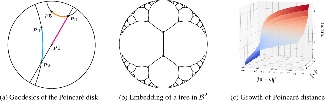 Figure 1 for Poincaré Embeddings for Learning Hierarchical Representations