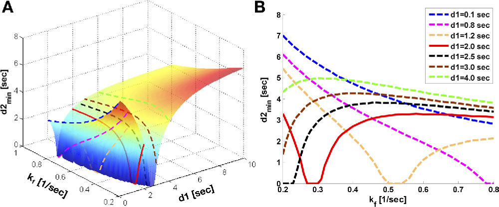 Fig. 3. d1,opt seeking by numerical solving of Eqs. 5–8. Parameters for numerical simulation are as follows: kf (0.2, 0.8) s 1, T1,PCr int 4.5 s, T1,PCr int /T1,ATP