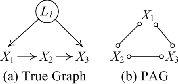 Figure 4 for FRITL: A Hybrid Method for Causal Discovery in the Presence of Latent Confounders