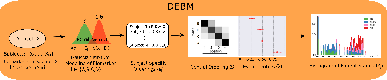 Figure 1 for Analyzing the effect of APOE on Alzheimer's disease progression using an event-based model for stratified populations