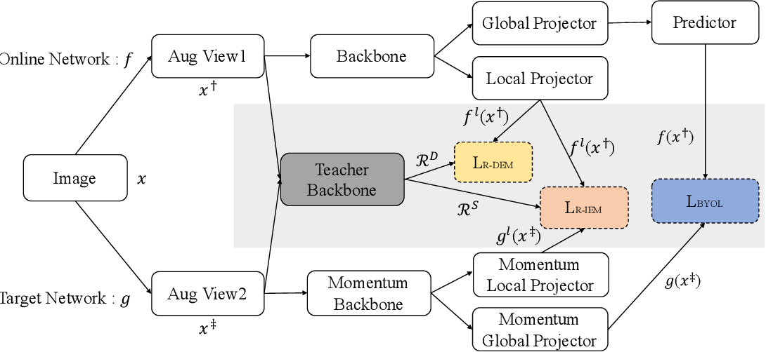 Figure 3 for Exploring the Diversity and Invariance in Yourself for Visual Pre-Training Task